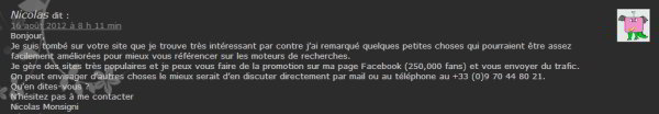 Boulet du SEO - spam blog 1