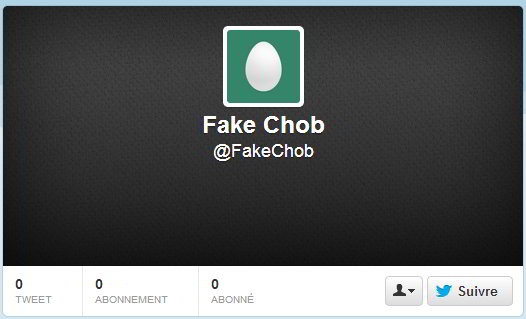 Tweetoeuf, entre amateur et fake