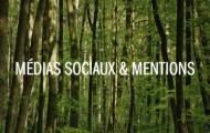 medias-sociaux-arbre-decision_vignette
